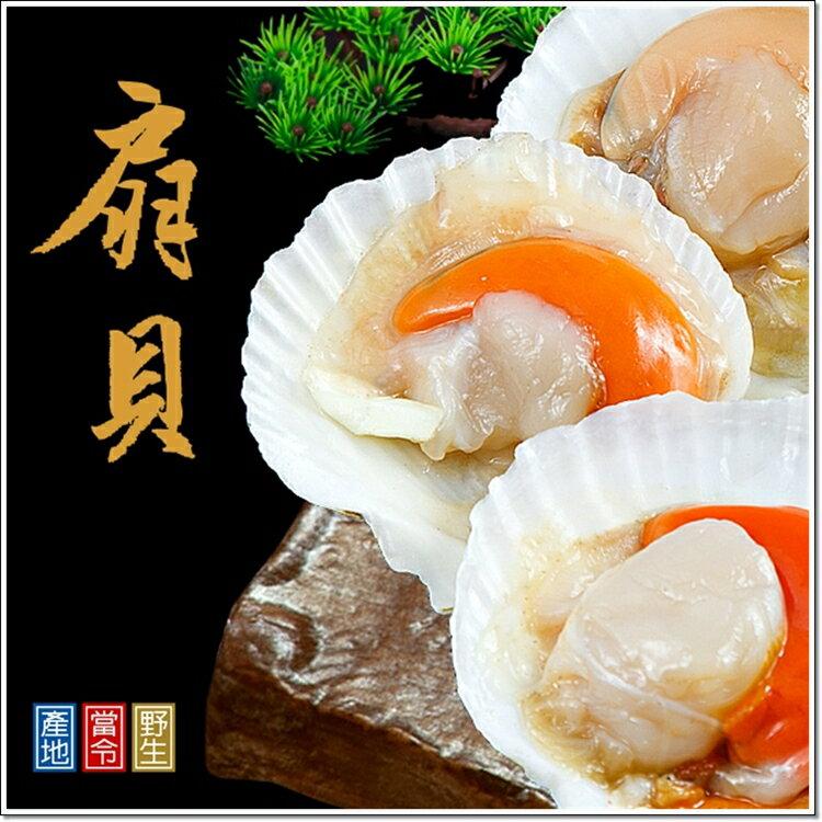 北海扇貝 每包7^~8顆 350克 海鮮食材 料理方便 7~11、阪急  合格