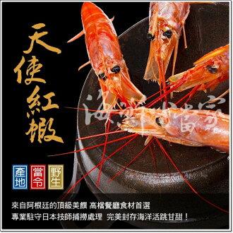天使紅蝦 20cm巨無霸16尾裝 頂級生食級美饌 配駐專業日本技師指導!!
