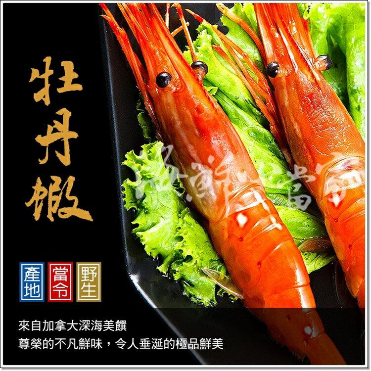 牡丹蝦  Jumbo Size 加拿大深海美饌 壹公斤16~20尾盒裝 免運!