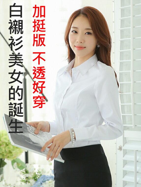 襯衫美女的誕生 (加挺版 長袖 )OL 襯衫 套裝 通勤 工作服 大尺碼 wcps24
