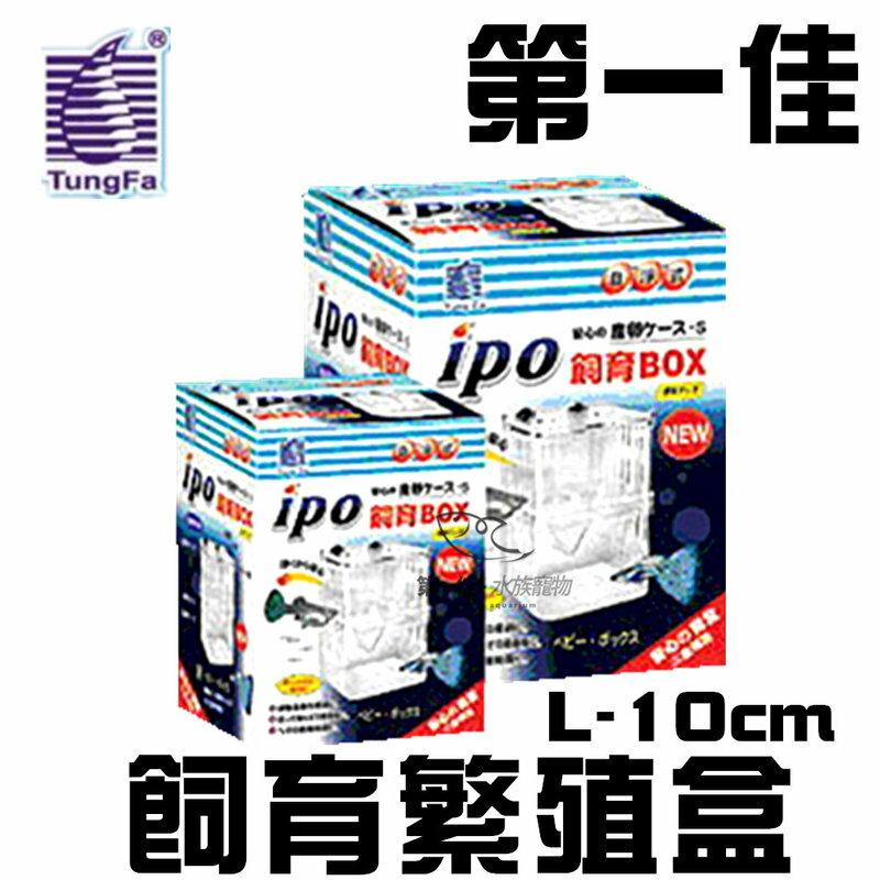 [第一佳 水族寵物] 台灣T&F-同發〔E-IPO-D10〕飼育繁殖盒 L-10cm 迷你繁殖箱 隔離箱 隔離盒 產子盒