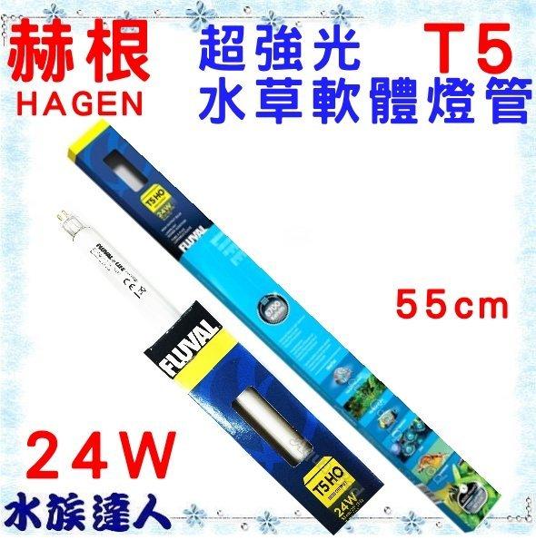 【水族達人】【燈管】赫根HAGEN富濾霸FLUVAL《T5超強光水草軟體燈管 24W 55cm HG-A1667》
