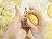 山東姥姥【手工南瓜饅頭115g /  一包6入】季節南瓜入料,善用食材本味,不添加一滴水,完整呈現南瓜綿密,純手工製作100%不添加防腐劑、泡打粉和人工色素★ 1
