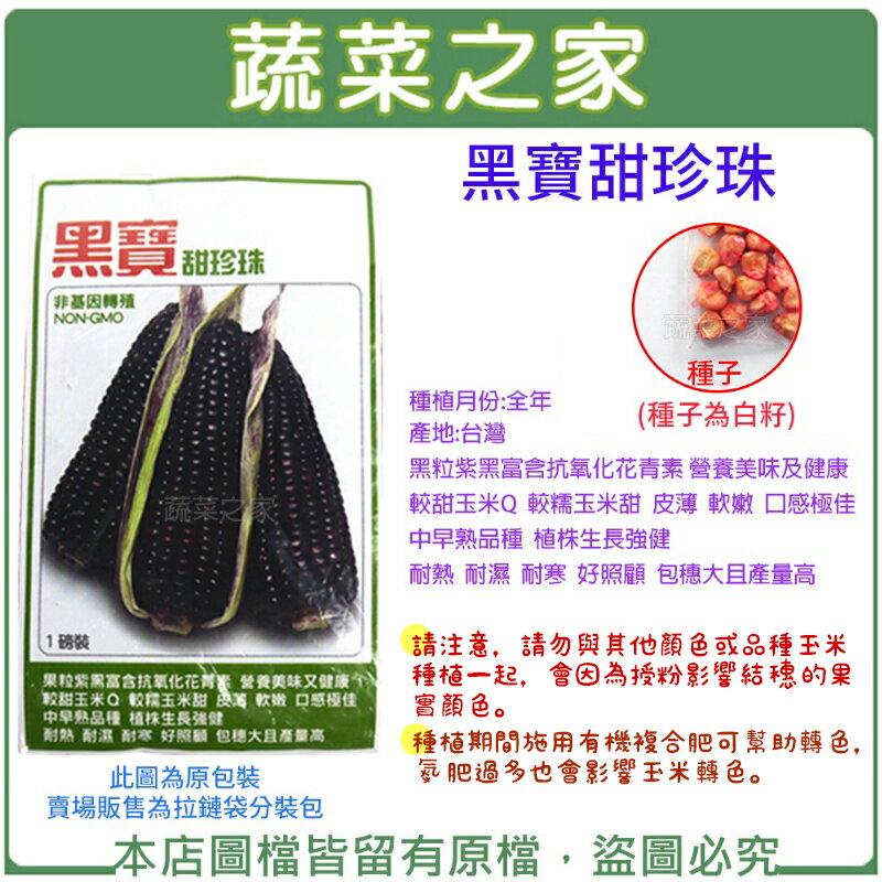 【蔬菜之家】G26.黑寶甜珍珠糯玉米種子(共兩種包裝可選)