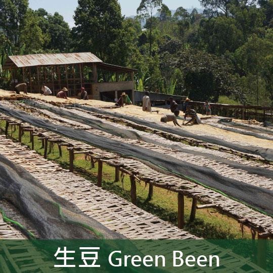 《未烘焙生豆》衣索比亞日曬耶加雪菲可可處理廠G1