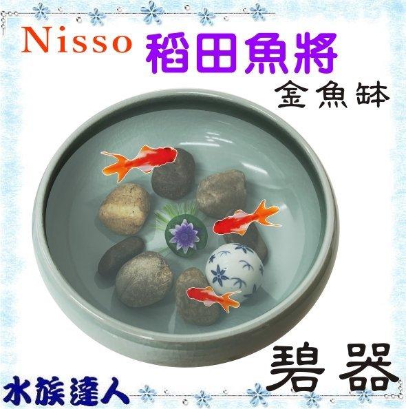 原價1970【水族達人】日本NISSO《景觀生態缸 稻田魚將 碧器 N-NWS-896》 淨水石 容器 和風缸