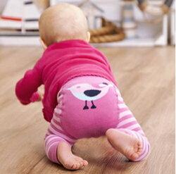 【hella 媽咪寶貝】英國 JoJo Maman BeBe 圖案嬰幼兒內搭褲/保暖襪_桃粉小鳥(JJP002)