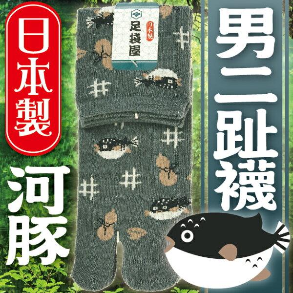 【沙克思】足袋屋滿佈河豚男二趾短襪特性:舒適棉混+二趾足袋設計+和風造型(襪子男襪和式足袋二趾襪二指襪日本製)