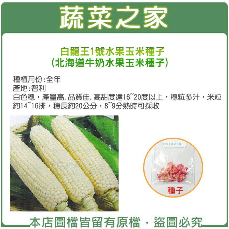 【蔬菜之家】G50.白龍王1號水果玉米種子(北海道牛奶水果玉米種子)(共2種包裝)