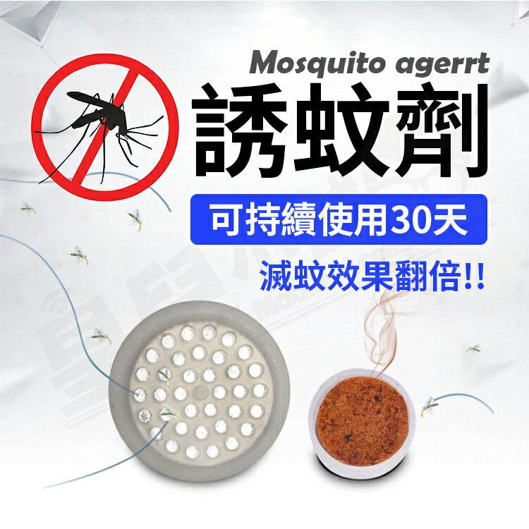 電子滅蚊燈 光觸媒 誘蚊 捕蚊燈 無輻射靜音 滅蚊蠅燈【AF248】