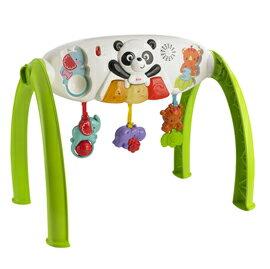 【悅兒樂婦幼用品舘】Fisher-Price 費雪 小熊貓聲光健身器