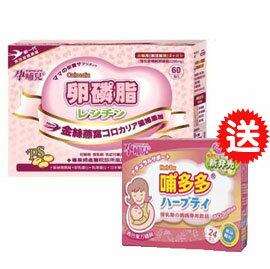 【悅兒樂婦幼用品?】mamacare 孕哺兒R卵磷脂燕窩多機能細末-60包入~送孕哺兒R哺多多媽媽飲品 顆粒-24包入