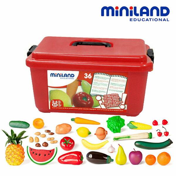 【西班牙Miniland】蔬果百寶箱36件組(含收納盒)ML000034