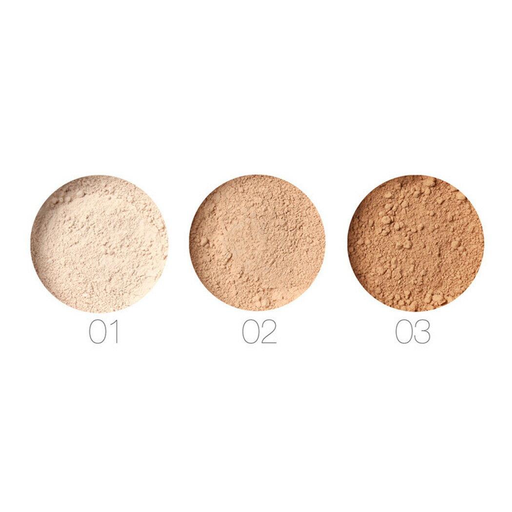 Beauty Pro Powder Loose Powder Waterproof Skin Finish Powder 2