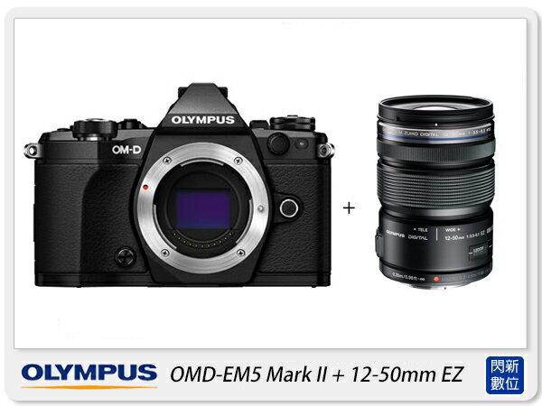 送64G 副廠電池 清潔組 保護貼 Olympus E~M5 Mark II  12~50