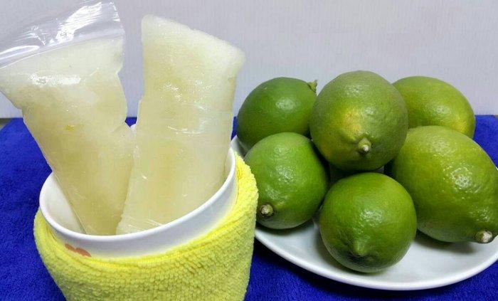 [鼎葉津]純手工製古早味百分百水果凍凍冰1支【檸檬】  低溫冷凍滿480元免運費