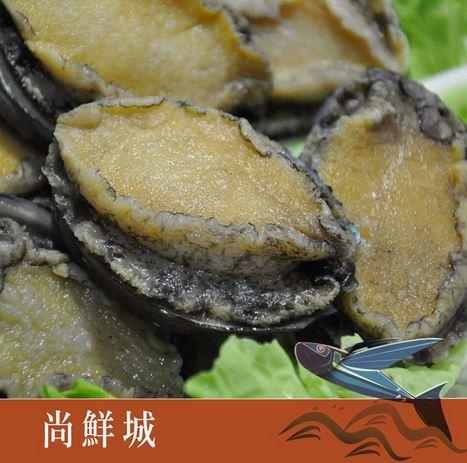 【尚鮮網】生凍帶殼鮑魚(10入裝)