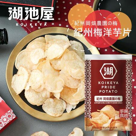 日本湖池屋紀州梅洋芋片60g薯片梅子薯片紀州梅洋芋片梅子洋芋片餅乾【N102910】