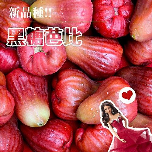 【鮮果日誌】蓮霧界的LV黑糖芭比4台斤