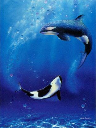 500片 雙鯨