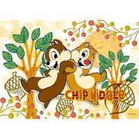 兒童節禮物Children's Day到Chip an' Dale並肩合作拼圖108片