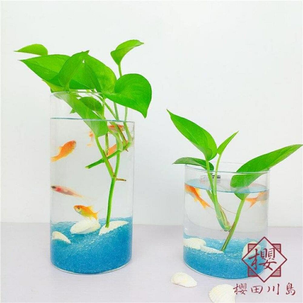 淘夢屋 魚缸辦公桌面水培植物花瓶魚缸圓柱形【櫻田川島】