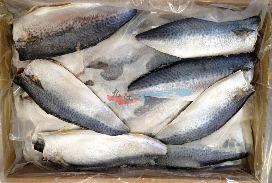 【九江】台灣薄鹽鯖魚片45/55---〈整箱下單區〉45~55片/箱---✦