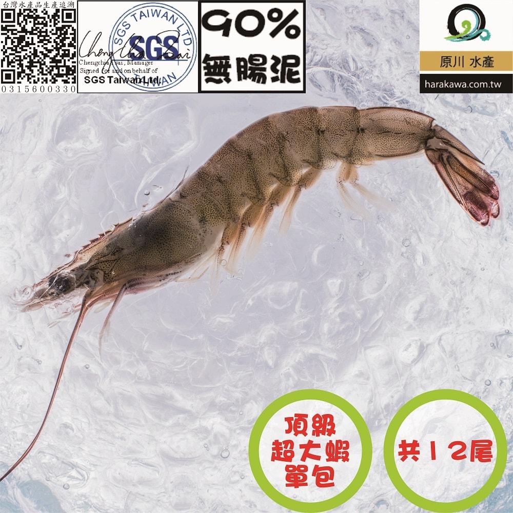 原川 芝海佬白蝦 超大蝦   約12~14尾  300g  包 三包  五包  七包
