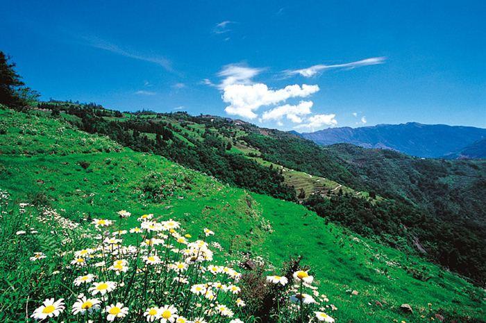 【清境】綠楊景觀溫泉山莊-雙人住宿+小瑞士入園證(一泊二食) 1