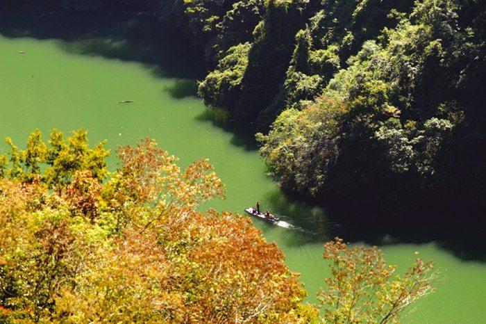 【清境】御花園景觀山莊-溫馨四人房+小瑞士入園證-(一泊二食) 2