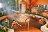 【清境】御花園景觀山莊-溫馨四人房+小瑞士入園證-(一泊二食) 6