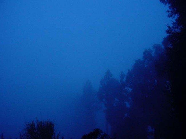 【清境】御花園景觀山莊-溫馨四人房+小瑞士入園證-(一泊二食) 9
