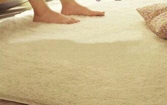 促銷特賣 經濟實用 抗漲促銷 200*300 CM 舒柔絲毛防滑柔軟地墊/ 地毯