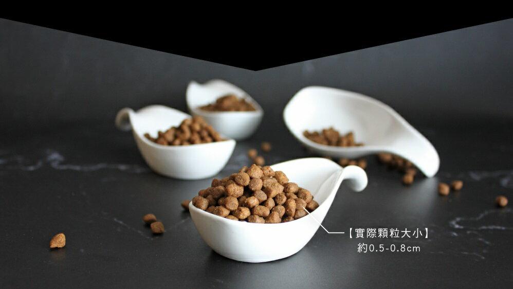 【貓糧】加拿大 Go!高含肉量無穀系列 - 能量放牧羊 全貓配方 3磅(1.36kg)