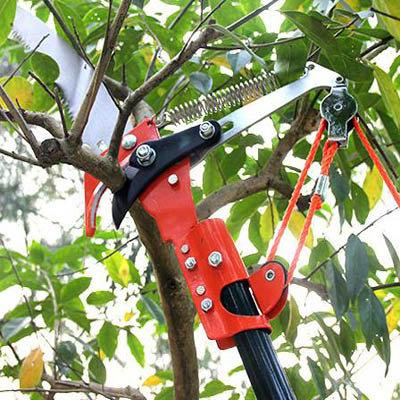 【伸縮高空剪枝剪鋸-剪高3.54米-伸縮124237cm-1套組】伸縮兩用樹枝剪摘果器-5170855
