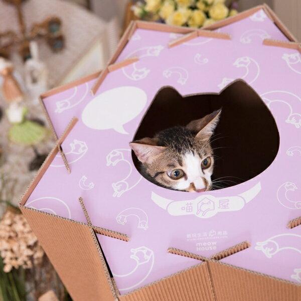 寵物用品喵屋【喵滾滾-迷情紫】是貓屋也是玩具,無限組合,廠商直送免運費,戀家小舖