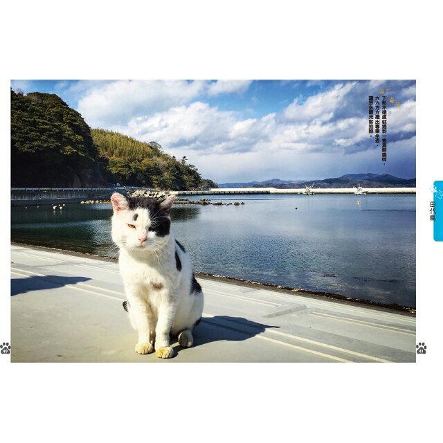 日本貓島旅行 7