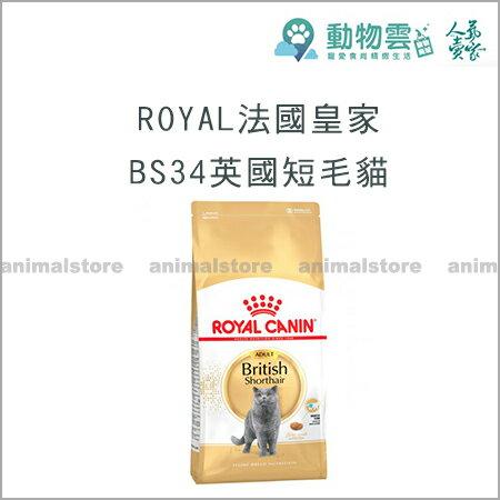 ROYAL法國皇家-BS34英國短毛貓4kg