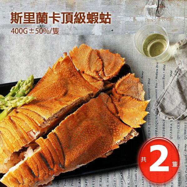 築地一番鮮:【築地一番鮮】巨無霸斯里蘭卡頂級蝦蛄2隻(400G隻)免運組