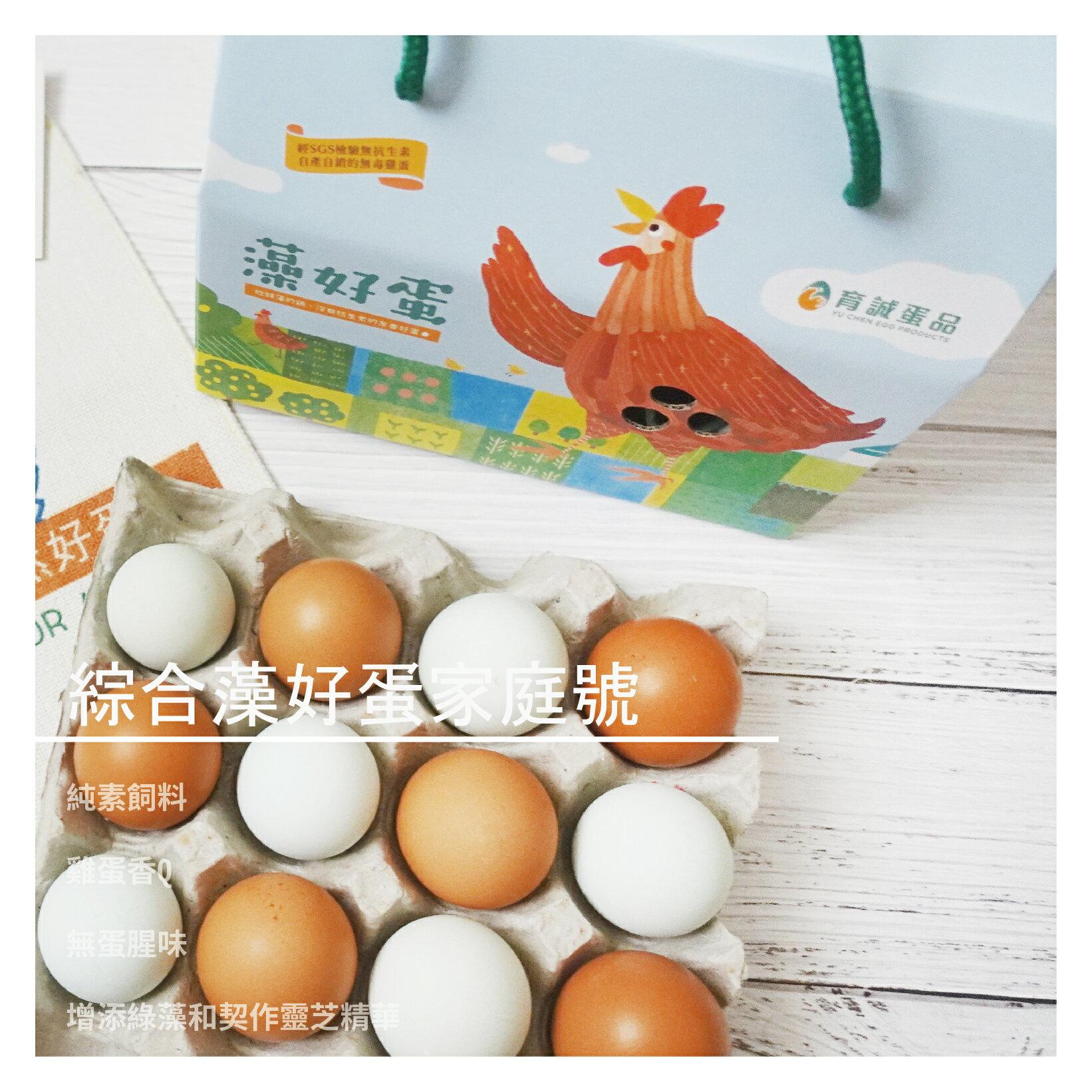 【育誠藻好蛋】綜合靈芝彩色蛋 家庭號 24入X4箱