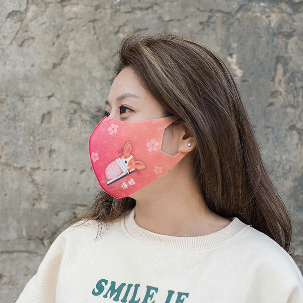 【Prodigy波特鉅】犬系列─野櫻粉─抗UV3D立體透氣口罩抗菌2入組