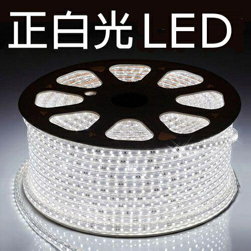 LED燈條/露營串燈/營燈/聖誕燈/營繩照明/露營專用 LED 5050加寬防水燈條 附收納袋/附插頭 正白光 五米起 高亮度新款 多長度可選