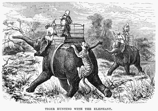 India Tiger Hunt Na Tiger Hunt In India Wood Engraving American 19Th Century After Paul Philippoteaux Poster Print by (24 x 36) d726c1cb637596a846dc9da381775dc6