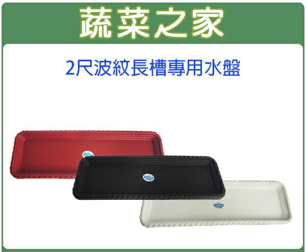 【蔬菜之家015-F58】2尺波紋長槽專用水盤磚紅色、棕色、白色