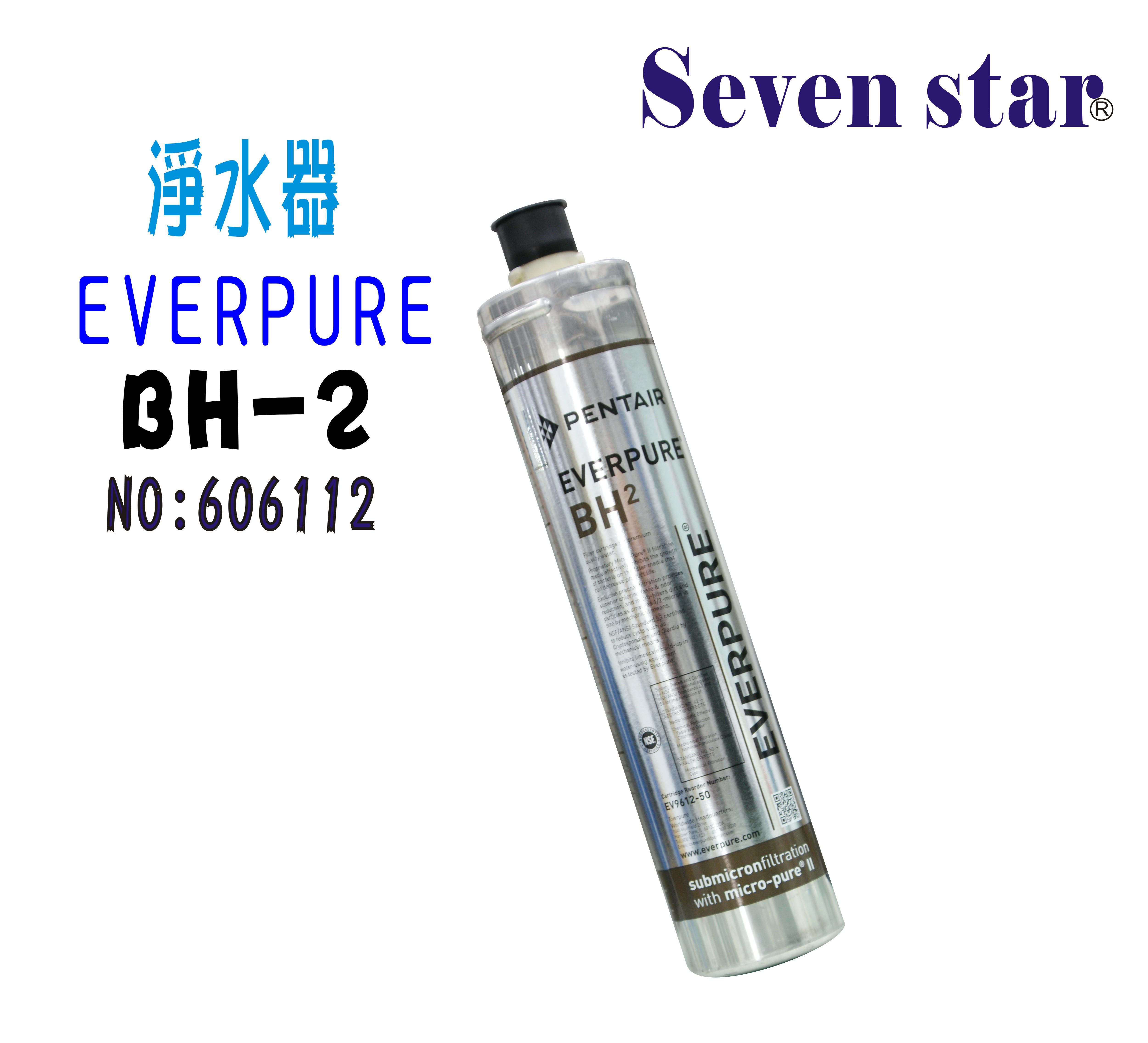 BH2過濾器Everpure淨水器  另售S100、S104、H104、4C、4DC、H100濾水器貨號:6112【七星淨水】