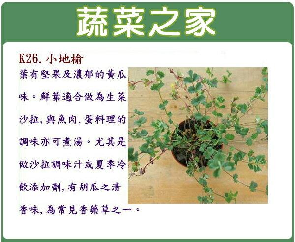 【蔬菜之家】K26.小地榆種子60顆