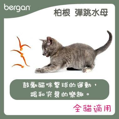 bergan 全系列寵物 用品~彈跳水母