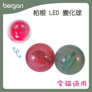 bergan 全系列寵物 用品~LED 變化球