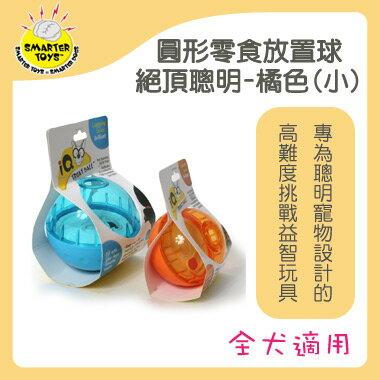 Smarter Toys 聰明零食放置球~圓形零食放置球 絕頂聰明^(小橘色^)