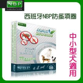《西班牙NBP》天然香茅 防蚤頸圈-中小型犬/38cm